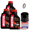 Suzuki_oil_filter_3L_7100 Motul